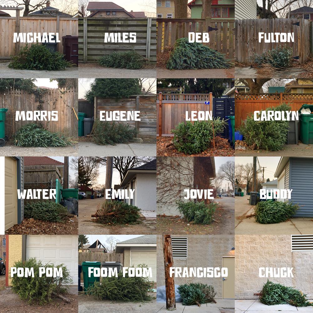 Michael, Miles, Deb, Fulton, Morris, Eugene, Leon, Carolyn, Walter, Emily, Jovie, Buddy, Pom Pom, Foom Foom, Francisco, Chuck