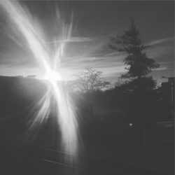 Sun blasting through the frigid -8° air
