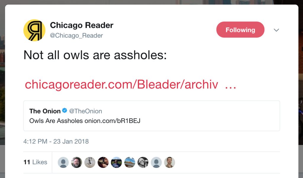 Not all owls are assholes