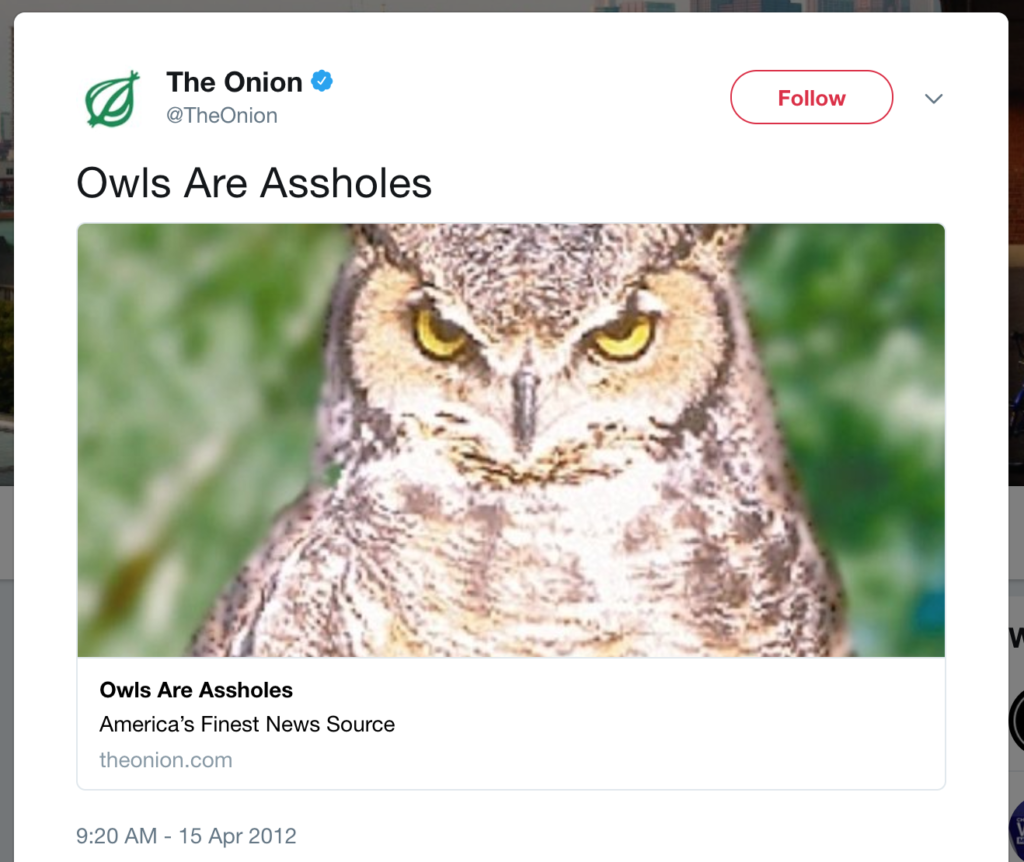 Owls are assholes