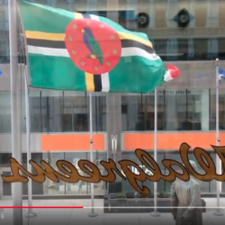 Flag of Dominica in Plaza of the Americas