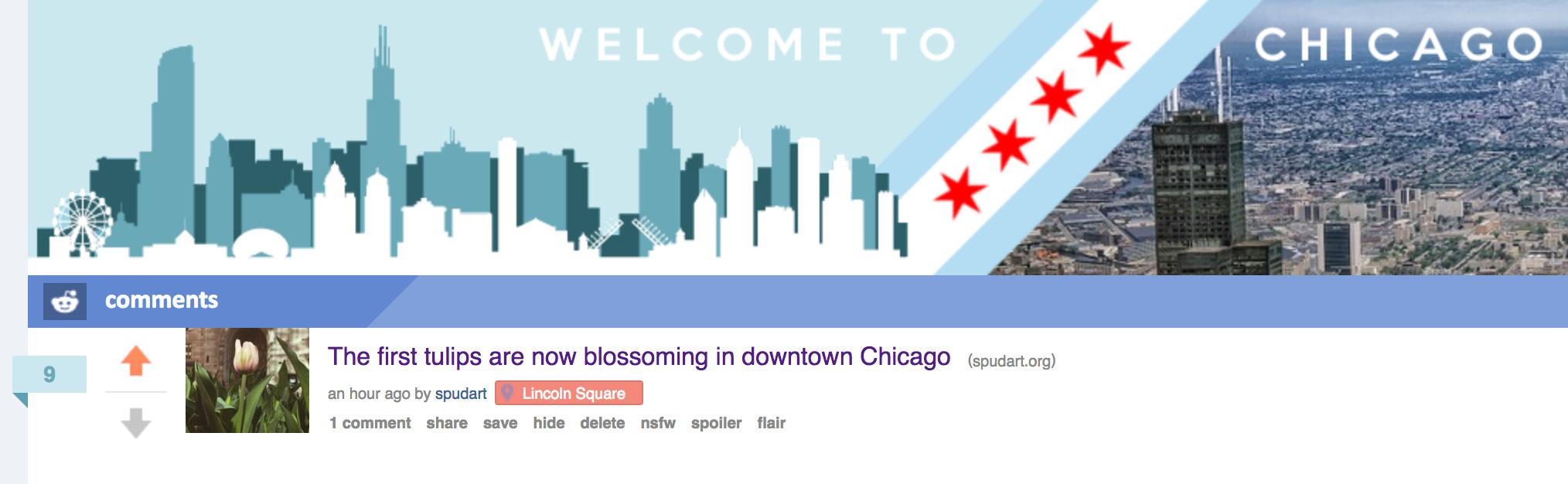 tulips on chicago reddit