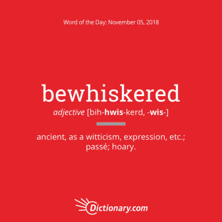 bewhiskered: word of the day