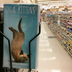 Kitten Yoga planner calendar found at Jewel-Osco grocery store