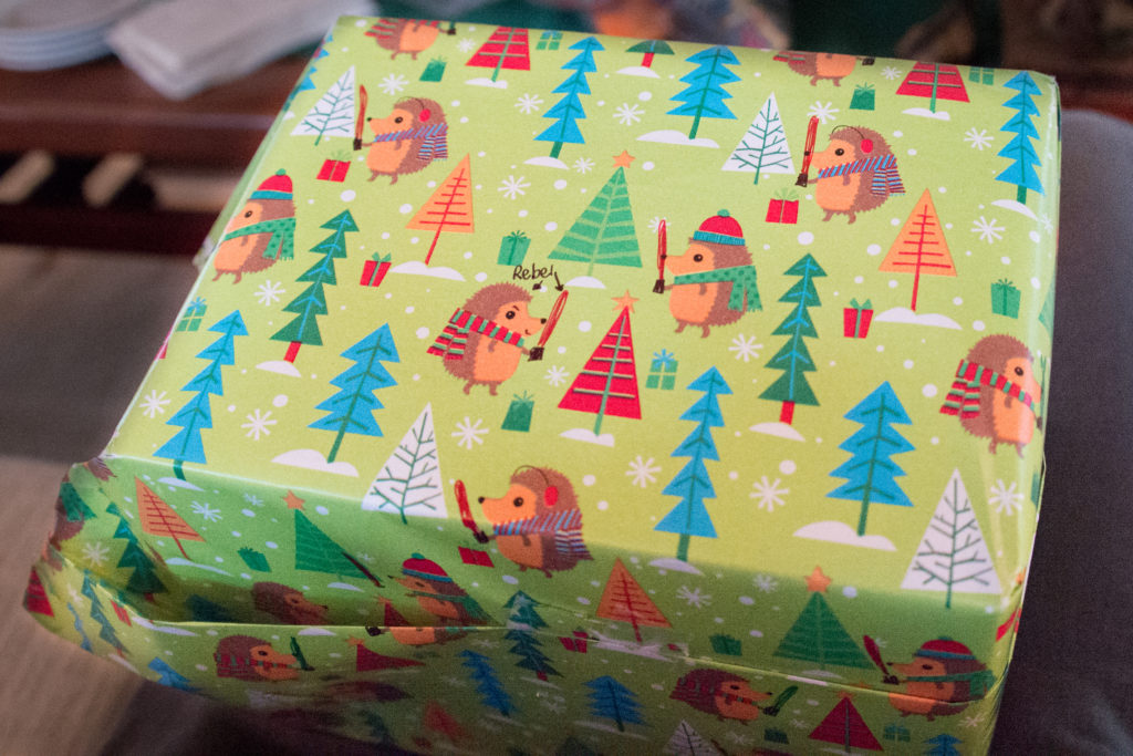 Hedgehog wrapping paper with custom light sabers