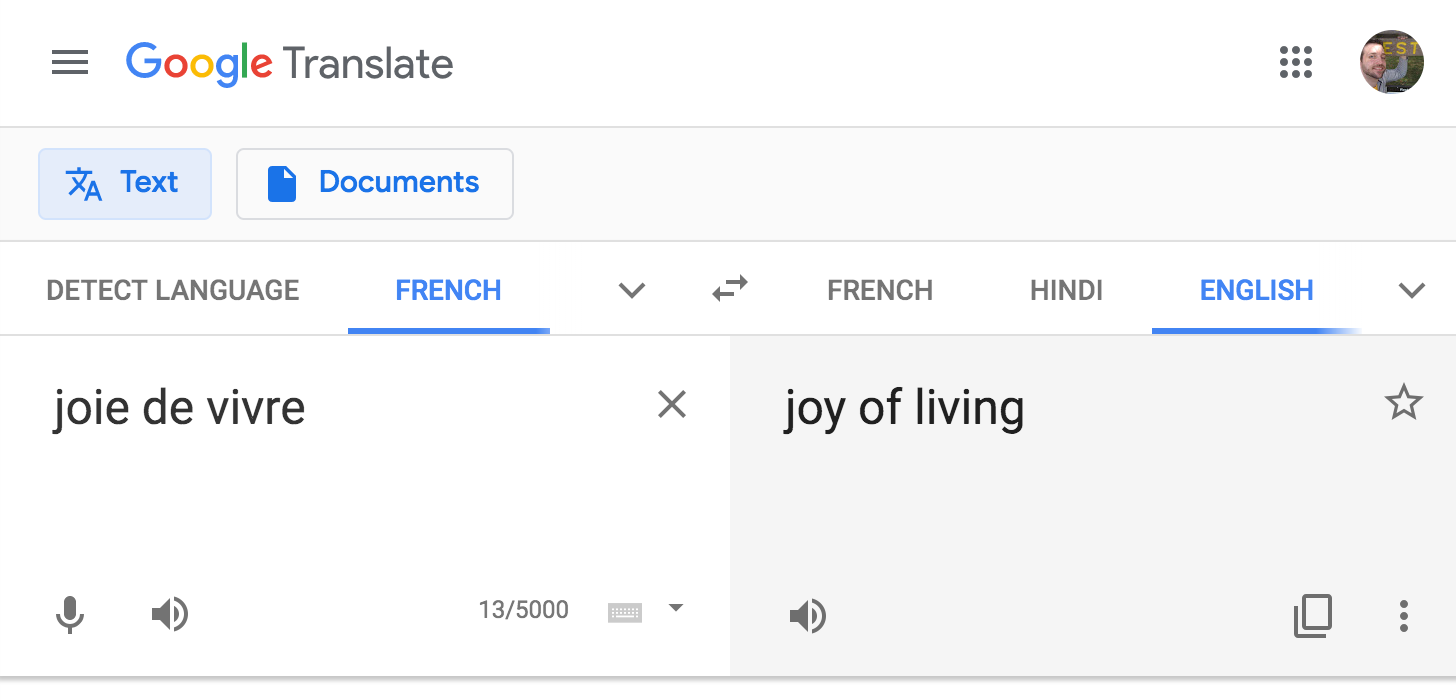 """joie de vivre"" from French to English ""joy of living"""