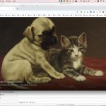 Adorable painting of puppy and kitten in Google Arts & Culture