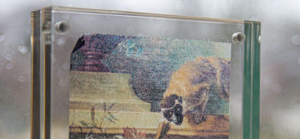 Detail of art printed onto toilet paper