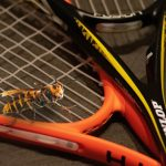 Tennis rackets are legit weapons against Murder Hornets in Asia