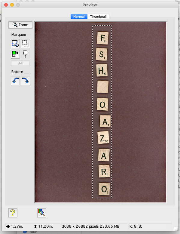 Scanner preview of Scrabble tiles, aligned vertically centered.