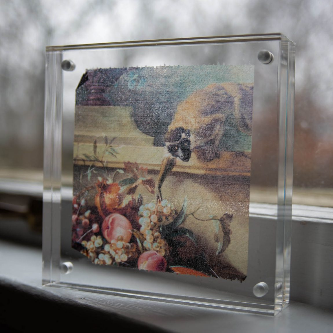 Toilet paper art print inside acrylic frame